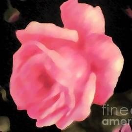 Catherine Lott - Pink Fabric Rose Thick Paint