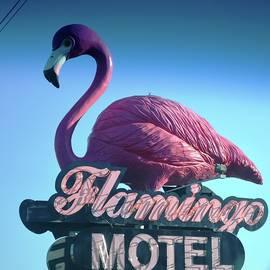 Karen Majkrzak - Pink Flamingo Sign