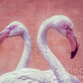 Kathy Franklin - Pink Flamingos
