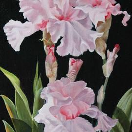 Elaine Jacobs - Pink Iris