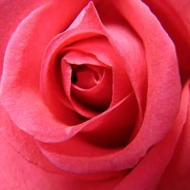 Mary Halpin - Pink Lady