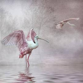 Brian Tarr - Pink Mist