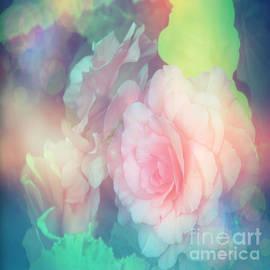 Vickie Emms - Pink Pastel Begonias