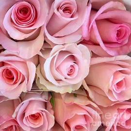Wonju Hulse - Pink pink roses