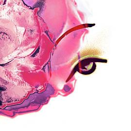 Jayne Logan Intveld - Pink Rose Lipstick Girl