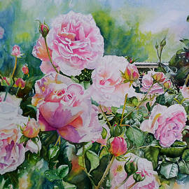 Kerry Scally - Pink Roses with Honeyeater
