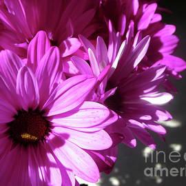 Gardening Perfection - Pink Sprinkler