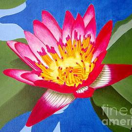 Sharon Patterson - Pink Water Lily