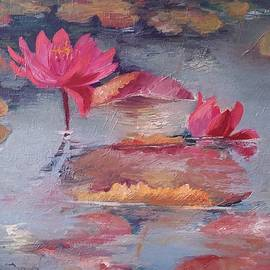 Vali Irina Ciobanu - Pink waterlilies