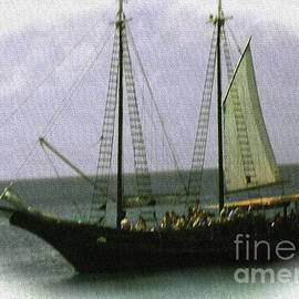 Iris Gelbart - Pirates