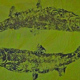 Jeffrey Canha - PISCES RISING  Steelhead Salmon