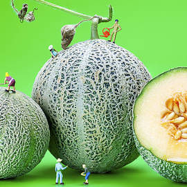 Paul Ge - Planting cantaloupe melons little people on food