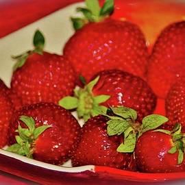 Cynthia Guinn - Plate Of Sweetness
