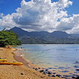 Lynn Bauer - Play Time in Princeville