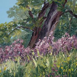 Mary Giacomini - Plein Air Purple