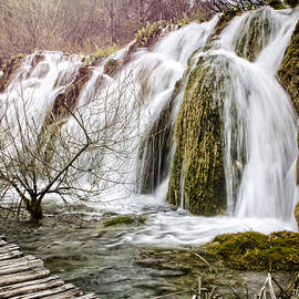Heather Applegate - Plitvice Cascades