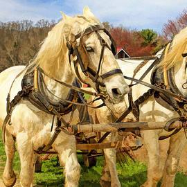 Geraldine Scull   - Plow horses at Longstreet Farms Holmdel Park Holmdel New Jersey