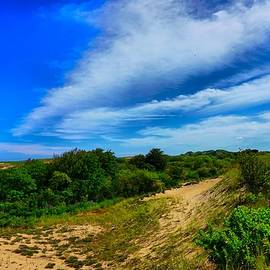 Lilia D - Plum Island dunes