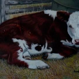 Sandra Sengstock-Miller - Poddy Calf