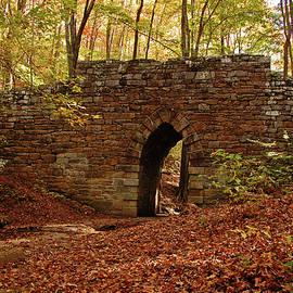 Ben Prepelka - Poinsett Bridge Heritage Preserve