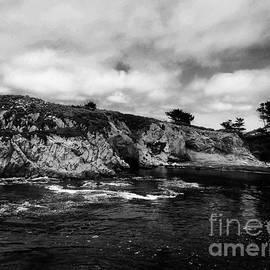 Chris Berry - Point Lobos 4