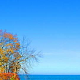 Daniel Thompson - Pointe Aux Barquis Lighthouse  11.5.16