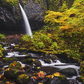 Vishwanath Bhat - Ponytail falls autumn