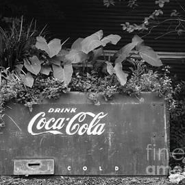 Gary Richards - Pop Cooler