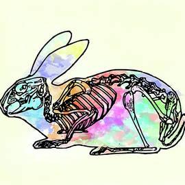 Keshava Shukla - Pop goes the bunny