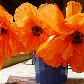 Nancy  Connolly - Poppies