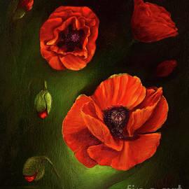 Zina Stromberg - Poppies