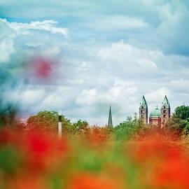 Poppy Field and Speyer Cathedral - Nailia Schwarz