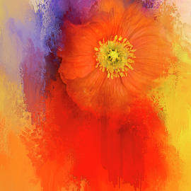 K Powers Photography - Poppy of Summer