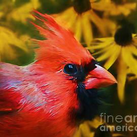 Tina  LeCour - Portrait Of A Cardinal