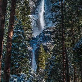 Bill Gallagher - Portrait of Yosemite Falls
