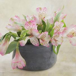 Kim Hojnacki - Pot of Pink Alstroemeria