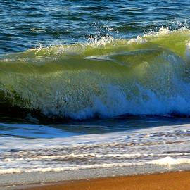 Dianne Cowen - Ocean Power