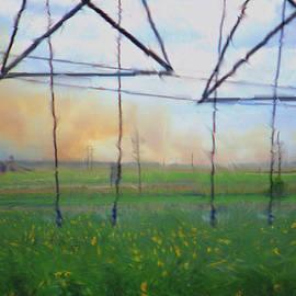 Aliceann Carlton - Prairie Fire Heat