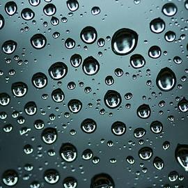 Morgan Wright - Precipitation