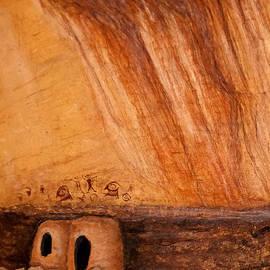 Janice Rae Pariza - Prehistoric Rock Art
