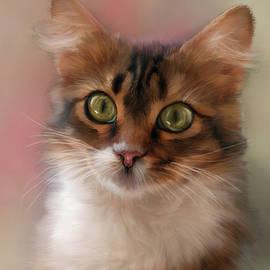 Mary Timman - Pretty Kitty