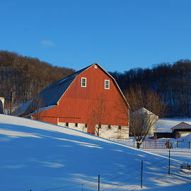 Wild Thing - Pristine Farm on a Winter Afternoon