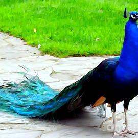 Ed Weidman - Proud As A Peacock