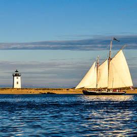 Karen Regan - Provincetown Sail