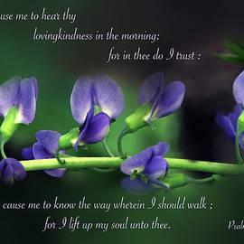 Debbie Nobile - Psalm 143v8