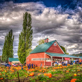 Spencer McDonald - Pumpkin Farm