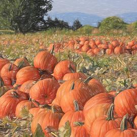 Donna Kennedy - Pumpkin Harvest