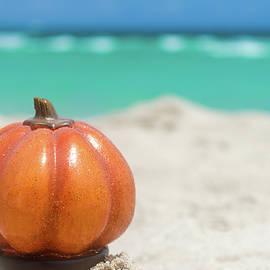 Elena Chukhlebova - Pumpkin on the beach - Halloween concept