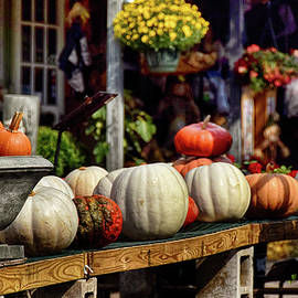 Tricia Marchlik - Pumpkin Season