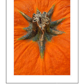 Mike Nellums - Pumpkin Stem poster